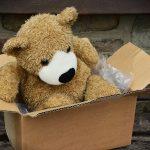 ダンボール箱に入ったクマのぬいぐるみ