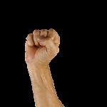 突き上げる拳